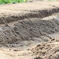 【第1回-でんでん畑】畑の土壌作り