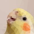 オカメインコのカリスマ、オザ兵長&友人の愛鳥をローポリ風加工してみた